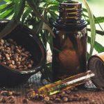 Medical Marijuana/CBD and Its Effect on the Workforce