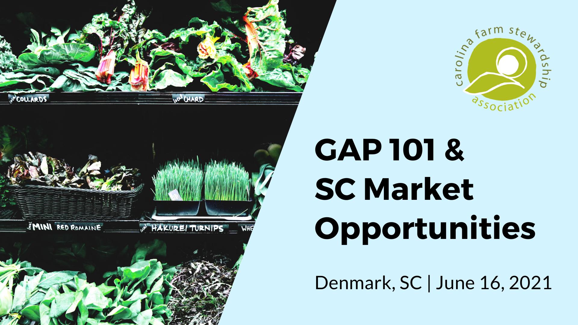 GAP 101 & SC Market Opportunities/Denmark, SC - June 16, 2021
